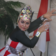 IndonesianFesitival20181202HPPIFIMG_4038